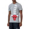 CAMISETA NBA TEAM TEE CHICAGO BULLS