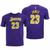 CAMISETA FLAT NAME & NUMBER S/S COTTON TEE- LEBRON JAMES (NIÑO)