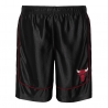PANTALON BOOMIN OUT BALL SHORT-CHICAGO BULLS (NIÑO)