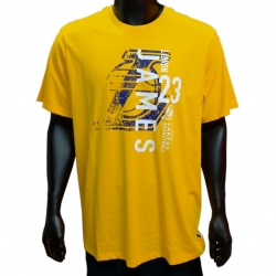 CAMISETA HANDLES 4 DAYS SS GRAPHIC TEE- LEBRON JAMES