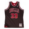 CAMISETA SCOTTIE PIPPEN 1995-96 CHICAGO BULLS