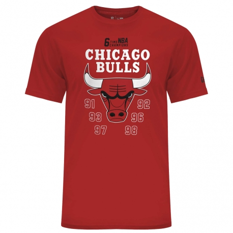 CAMISETA NBA TEAM CHAMPION TEE CHICAGO BULLS