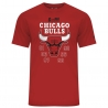 CAMISETA NBA TEAM CHAMPION TEE CHICAGO BULLS