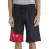 PANTALON CORTO NBA COLOUR BLOCK CHICAGO BULLS